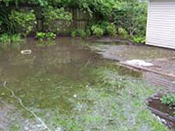 Cracks Damp and Storm Water - flooded garden picture 2